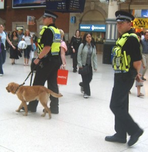 Sniffer dogs at London Airport