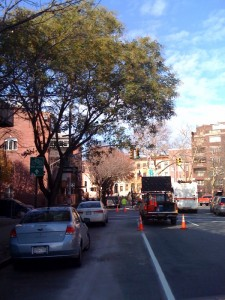 Bike lanes on Bedford being removed Photo: VIN News