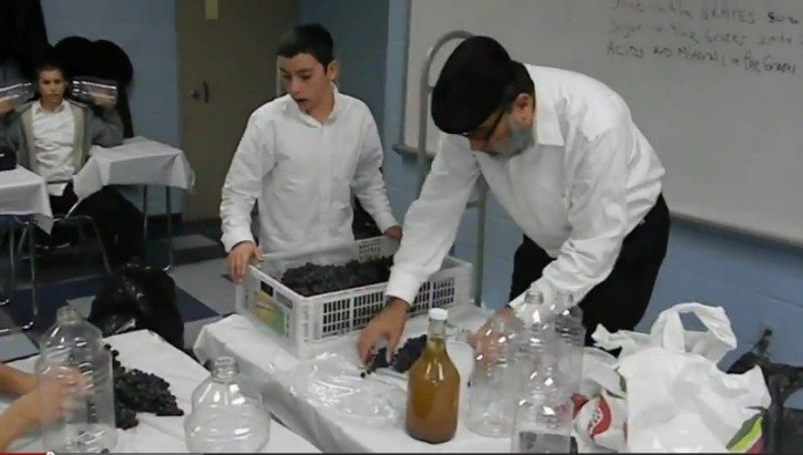The eighth grade boys of Yeshiva Oholei Torah in Crown Heights were treated to a six month long project as winemaker Joseph Zakon