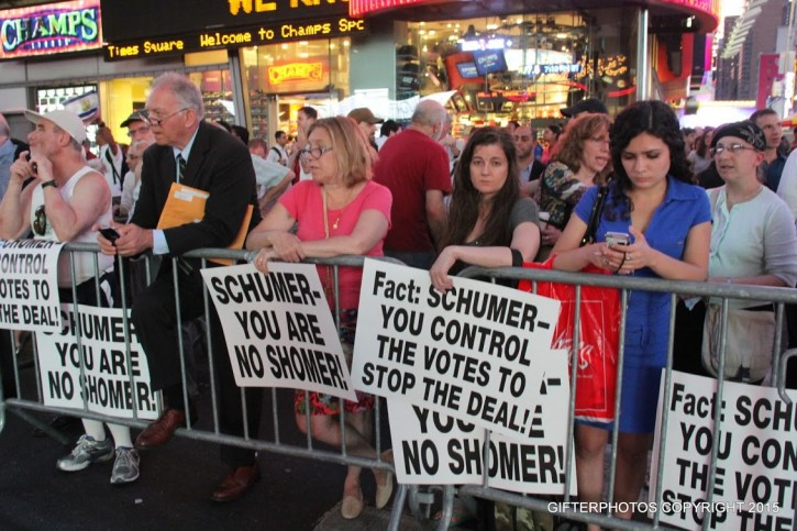 Protesters in Times Square on July 22, 2015 (Shimon Gifter/VINnews.com)