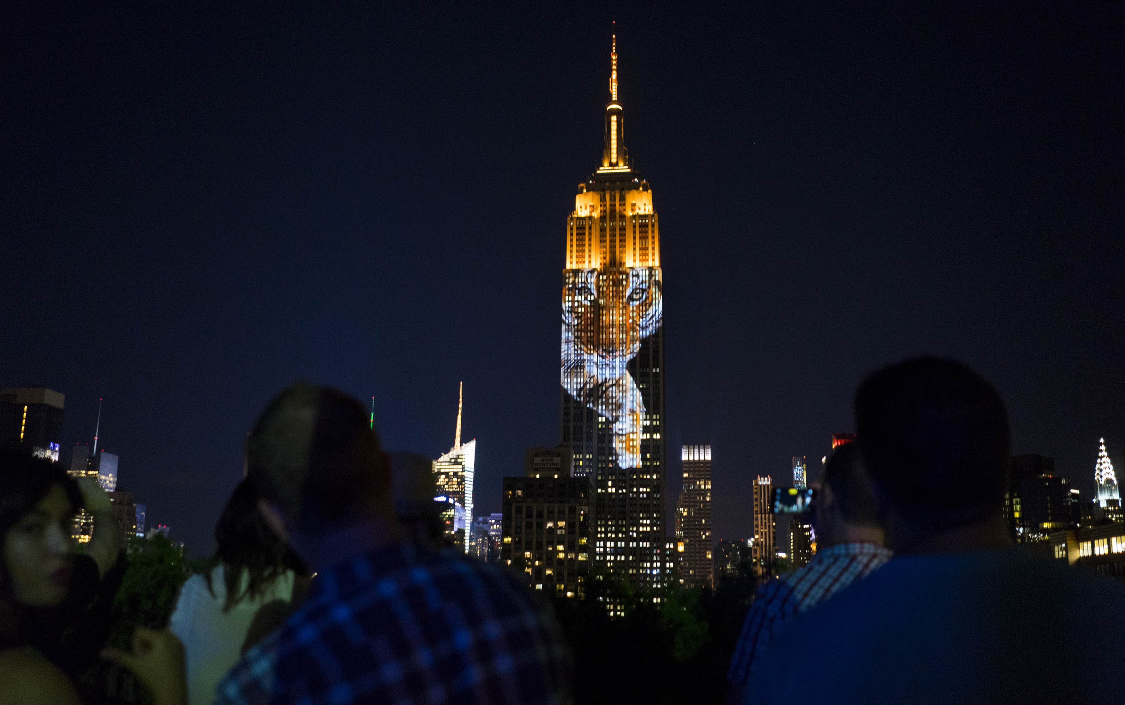 Animals Projected On Empire State Building