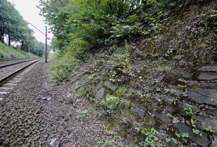"""The potencial site where a Nazi gold train is believed to be hidden, near the city of Walbrzych, Poland, Friday, Aug. 28, 2015. Poland's Deputy Culture Minister Piotr Zuchowski said Friday he has seen an image made by ground-penetrating radar that seemed to prove the discovery of an armored Nazi train missing in southwestern Poland since World War II, and is """"more than 99 percent certain that this train exists."""". (AP Photo/Str)"""