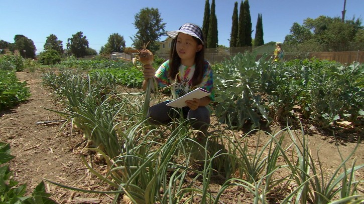 """This undated photo provided by Kikim Media shows a camper at Full Circle Farm in Sunnyvale, Calif., from a scene in the documentary film, """"In Defense of Food,"""" on PBS. The film is based on Michael Pollan's book, """"In Defense of Food,"""" and premieres on PBS on Dec. 30, 2015. (Jon Else/Kikim Media via AP)"""