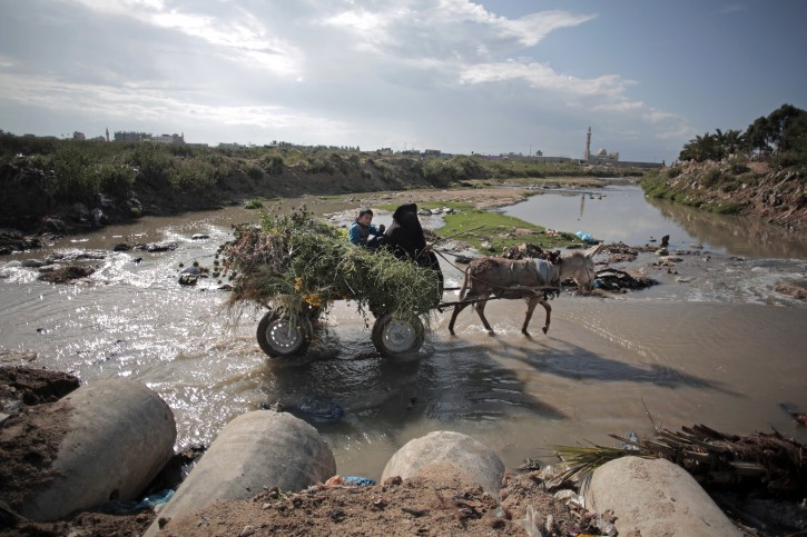 In this Wednesday, April 13, 2016 photo, A woman makes her way with her donkey in sewage water in Mighraqa neighborhood on the outskirts of Gaza City. Each day, millions of gallons of raw sewage pour into the Gaza Strip's Mediterranean beachfront, spewing out of a metal pipe and turning miles of once-scenic coastline into a stagnant dead zone. The sewage has damaged Gaza's limited fresh water supplies, decimated fishing zones, and after years of neglect, is now floating northward and affecting Israel as well, where a nearby desalination plant was forced to shut down, apparently due to pollution. (AP Photo/Khalil Hamra)