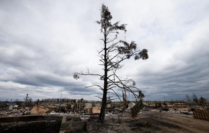 The charred remains of a tree stands over the Beacon Hill neighbourhood of Fort McMurray, Alberta, Canada, May 9, 2016 after wildfires forced the evacuation of the town. REUTERS/Chris Wattie