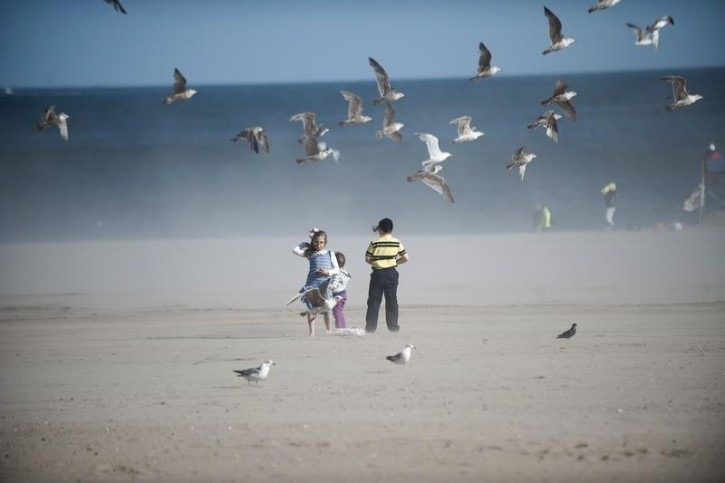 FILE - Seagulls fly over children on the beach at Coney Island in the Brooklyn Borough of New York, May 26, 2013. Reuters