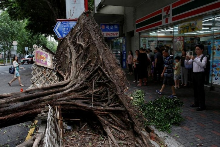 A man takes photo of an uprooted tree after Typhoon Nida hit Hong Kong, China August 2, 2016.  REUTERS/Tyrone Siu