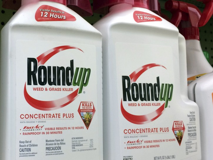 FILE - In this Jan. 26, 2017, file photo, containers of Roundup, a weed killer made by Monsanto, is seen on a shelf at a hardware store in Los Angeles. AP