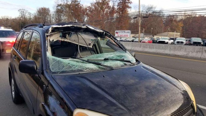 Howell, NJ – Crash Sends Deer Through Woman's Windshield On Route 9 In NJ