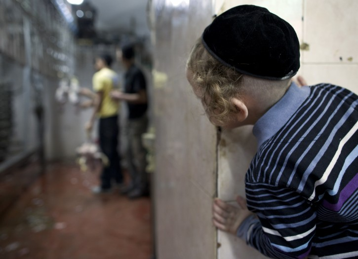 FILE - An ultra-Orthodox Jewish boy peers around the corner of a slaughter house to watch chickens that have had their feathers burned off. EPA