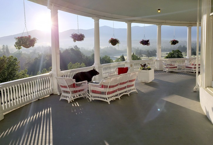 In this Saturday, June 29, 2019 photo provided by Sam Geesaman, a black bear walks along a veranda at the Omni Mount Washington Resort just after sunrise at Mount Washington, N.H. After staff made noise, the bear climbed down the stairs and returned to the woods. (Sam Geesaman/Omni Mount Washington Resort via AP)