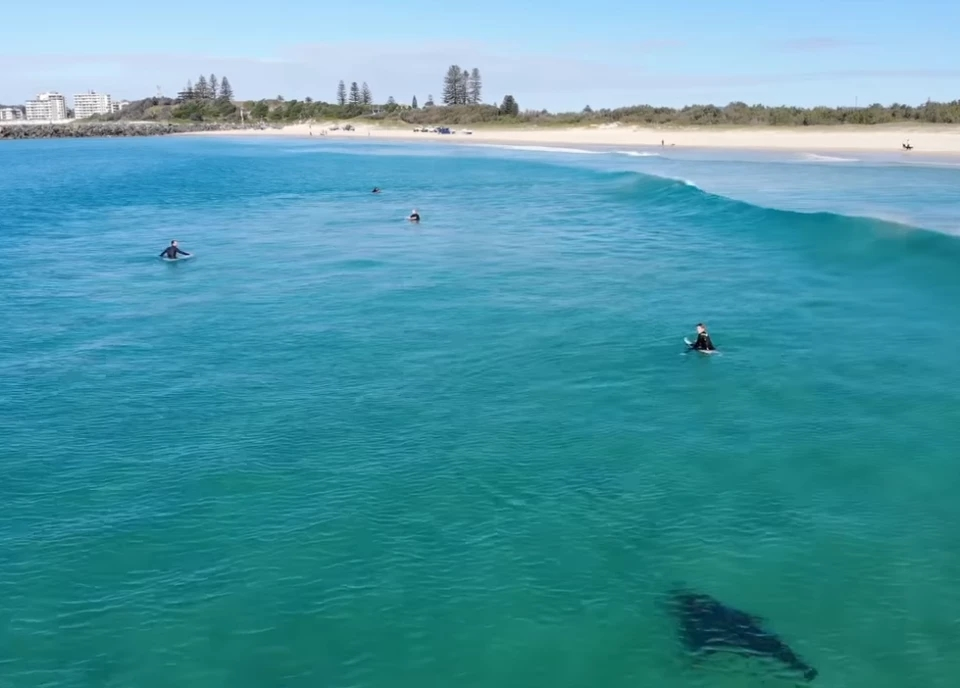New Symrna Beach >> New Smyrna Beach Fl Dad S Drone Captures Images Of Shark Swimming